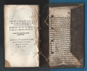 manutius.nazianz.1516.einband.rück
