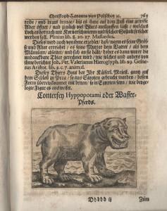 christl.ulysses.1678.flusspferd (3)