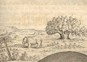 hippo.buffon.homepage