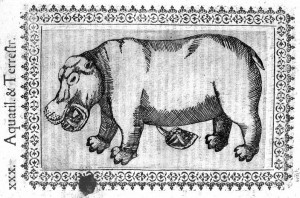 L0007945 Hippopotamus; 16th century Credit: Wellcome Library, London. Wellcome Images images@wellcome.ac.uk http://images.wellcome.ac.uk Hippopotamus; 16th century Minvs cognitarvm stirpivm aliqvot Fabio Colonna Published: 1606 Copyrighted work available under Creative Commons by-nc 2.0 UK, see http://images.wellcome.ac.uk/indexplus/page/Prices.html