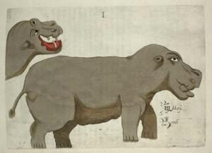 hippo.boym.1656.Flora_Sinensis_-_Hippopotamus